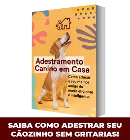 ADESTRAR-CAO